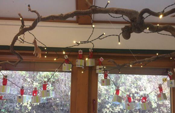 Adventszeit im Flohzirkus und Glück bei der Weihnachtsbaumverlosung